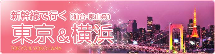 仙台/東北発 東京旅行(びゅう)
